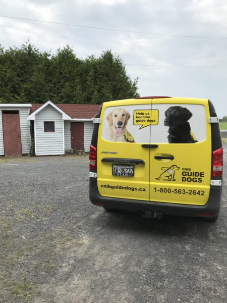 Guide Dogs Van Wraps